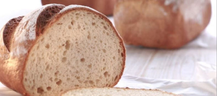 IREKS Singluplus - Gluten Free Bread
